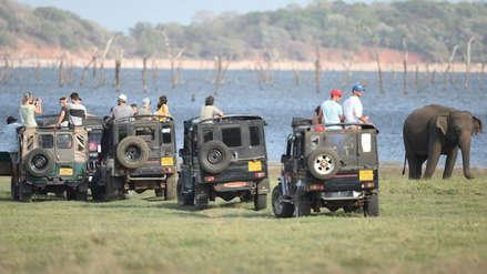 Turista estadounidense y su guía fueron secuestrados durante safari: piden US$ 500 mil de rescate