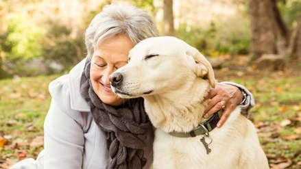 Estudio comprueba que la compañía de una mascota trae beneficios a la salud de los adultos mayores