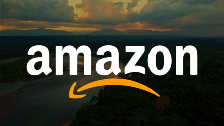 """Queremos nuestro nombre de vuelta: ocho países sudamericanos exigen regulación de extensión """"Amazon"""""""