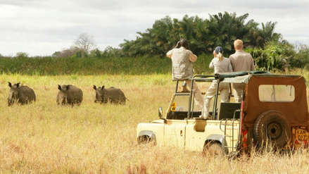 Liberan a turista estadounidense secuestrada durante un safari nocturno en Uganda