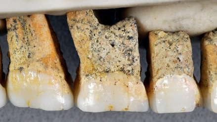 Investigadores descubren restos de una nueva especie humana: Homo luzonensis