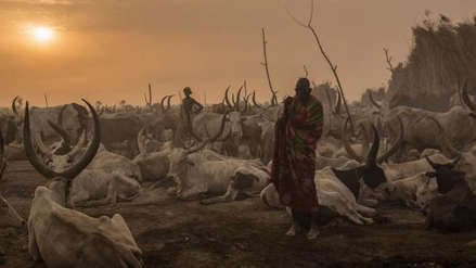 Al menos 50 muertos en un tiroteo por robo de ganado en Sudán del Sur
