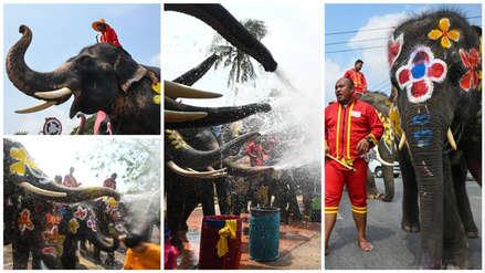 La fiesta del agua: 30 fotos de la controvertida celebración con elefantes que se realiza en Tailandia