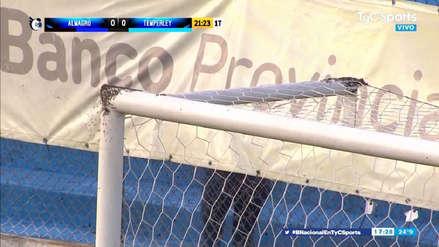 ¡Insólito! Partido del fútbol argentino fue paralizado por presencia de abejas en uno de los arcos