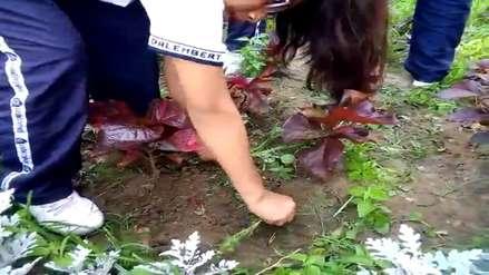 Día de la Tierra | Niños ayudan a mantener en buen estado parque de Trujillo