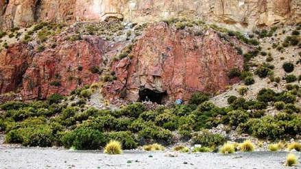 Un curioso hallazgo revela que hombres sudamericanos ya consumían cocaína y ayahuasca hace mil años