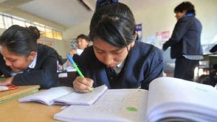 El 29 de mayo se presentará informe de recomendaciones para textos escolares
