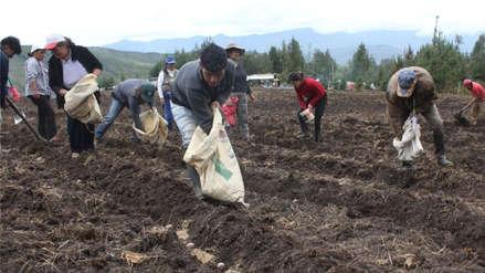 Despreciar el alimento y a quien nos alimenta conduce a una patología agraria