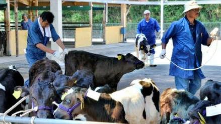 Japón levanta restricciones que aplicaba a carne de EE.UU. desde crisis de las