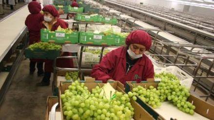 ¿Cómo afecta al Perú la guerra comercial entre EE.UU. y China?