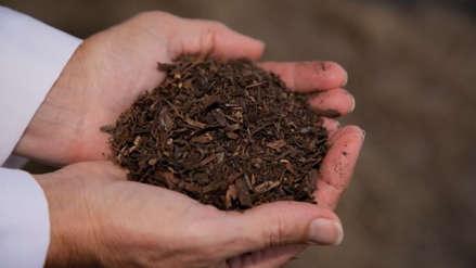 Washington legaliza un método para convertir cuerpos humanos en abono