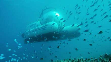 Uber lanza viajes en submarino en la Gran Barrera de Coral, ¿cuánto costará?