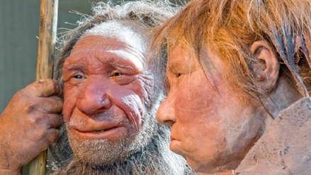 La caída de la fertilidad pudo provocar la extinción de los neandertales