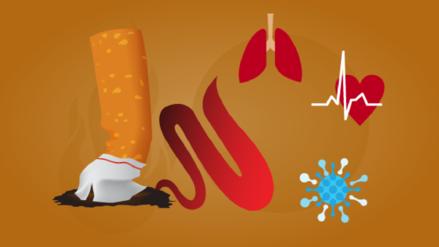 ¿Cómo afecta el tabaco a nuestra salud?