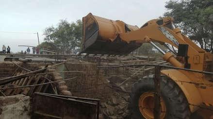 Chiclayo: Destruyen chanchería clandestina que era un dolor de cabeza para vecinos de la Victoria