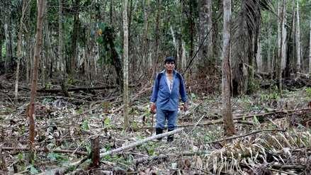 """Demetrio Pacheco y las amenazas por conservar Tambopata: """"Estamos expuestos sin protección"""""""