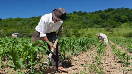 Conveagro: Para rescatar a la agricultura familiar se debe reestructurar el Minagri