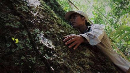 Arbio Perú: el compromiso de Tatiana Espinosa por salvar 916 hectáreas de bosque en la Amazonía peruana