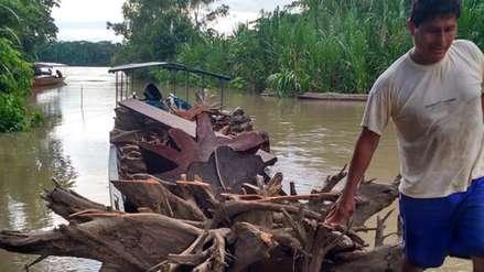 Comunidades aprovechan raíces y ramas que caen de manera natural en el Parque Nacional del Manu
