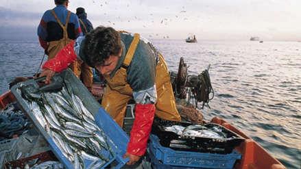 Día del Pescador: Más de 76 mil personas se dedican a la pesca artesanal en el país