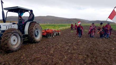 Sector agropecuario creció 3,5% entre enero y mayo del 2019