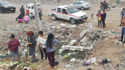 Villa El Salvador: Encuentran a nueve perros y cinco gatos muertos en bolsas de basura