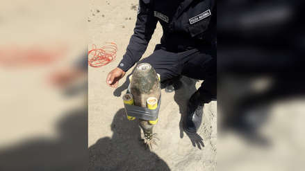 Video | Policía destruye artefacto explosivo que encontró debajo un un árbol