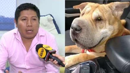 La historia de la perrita que llevó al TC a fallar contra la prohibición de mascotas en edificios