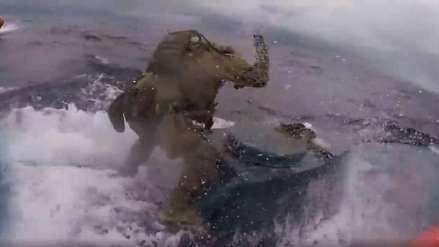 La dramática persecución de soldados de EE.UU. a un submarino cargado de cocaína en altamar [VIDEO]