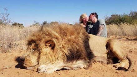 Indignación por la foto de una pareja que se besa frente a un león que acaba de cazar