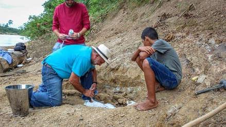 Un niño que estaba de paseo descubre por accidente los restos de un gigantesco cocodrilo
