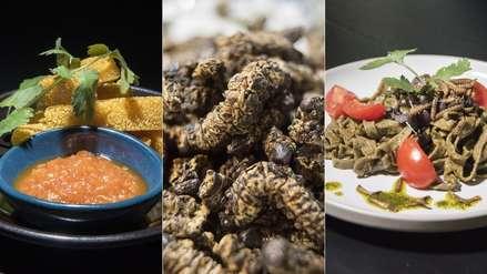 16 impactantes fotos del restaurante que ofrece un menú completo a base de insectos