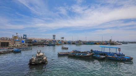 ¿La pesca industrial podrá reactivar la economía en el sur?