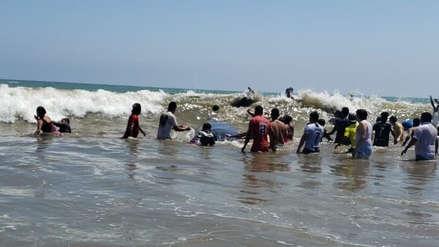 Así fue el retorno al océano de ballena que varó en playa de Tumbes y fue auxiliada por bañistas