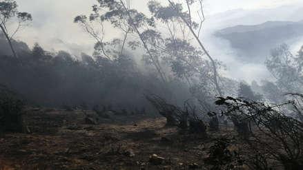Otuzco | Incendio consume bosque de eucalipto en Usquil (Fotos y video)