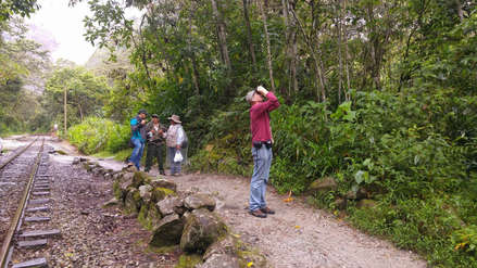 Incendio forestal afecta Santuario Histórico de Machu Picchu