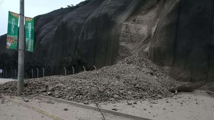 [FOTOS] Derrumbe en el acantilado de la Costa Verde provocó cierre del circuito de playas