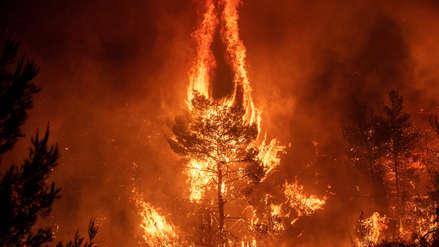 15 fotos del incontrolable incendio forestal que ha provocado una catástrofe ecológica en Grecia