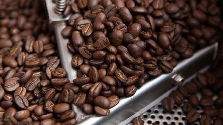Productores de café en crisis por sobreoferta mundial
