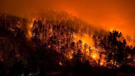 Declaran desastre regional en Bolivia por incendios que arrasan con bosques y pastizales