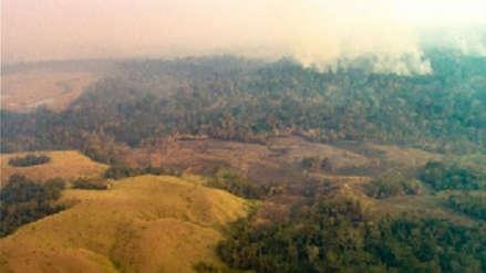 Humo del incendio en Bolivia y Amazonía de Brasil llegó a localidades peruanas