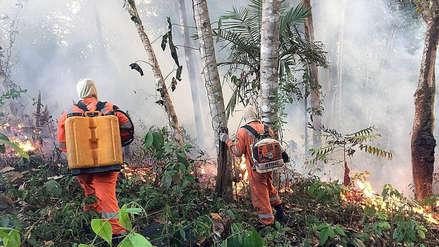 Las claves para entender los incendios en la Amazonía [ANÁLISIS]