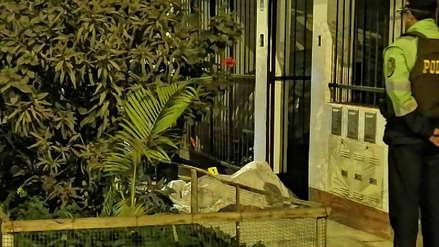 Sicarios mataron de un disparo en la cabeza a un abogado en Villa El Salvador