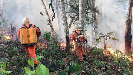 Un recuento de los incendios forestales que afectan a Brasil y otros países de América del Sur