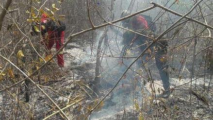 Más de 700,000 hectáreas y 1,817 familias afectadas por incendios en Bolivia