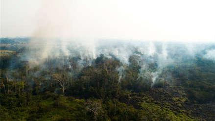 15 fotos de zonas que fueron afectadas por incendios forestales en Madre de Dios