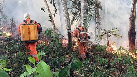 Incendios en la Selva, propuesta de diálogo en San Francisco [COLUMNA]