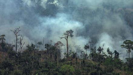 Reportan cientos de nuevos incendios forestales en la Amazonía brasileña [VIDEO]