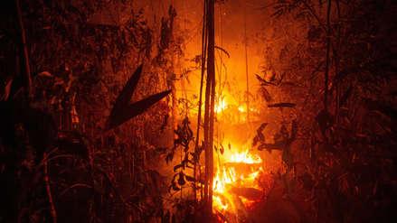 El G7 acordó movilizar 20 millones de dólares para combatir los incendios en la Amazonía