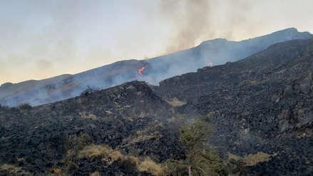 Apurímac: Bomberos luchan para controlar incendio forestal en Santuario Nacional de Ampay